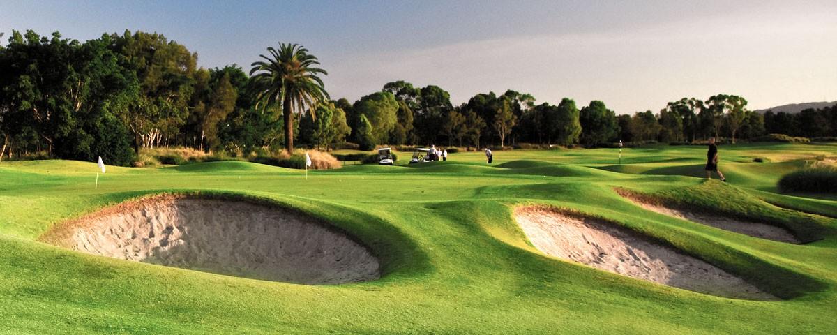 home_golf_blog4